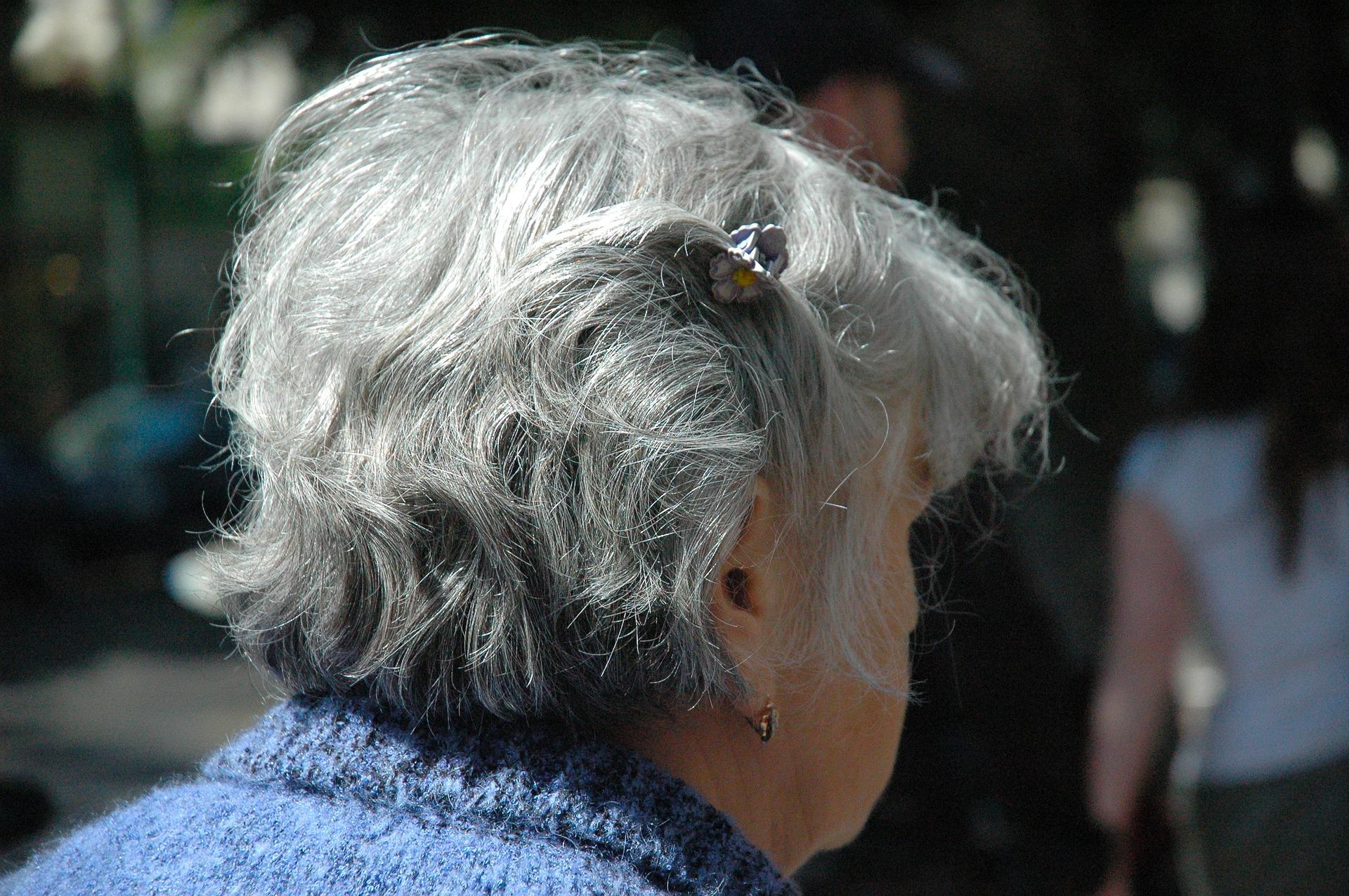 Governo assina protocolos para criar casas de acolhimento para idosas vítimas de violência doméstica